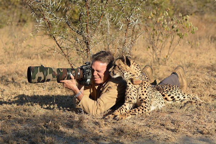 estos-animales-no-quisieron-ser-solo-fotografiados-tambien-podrian-ser-fotografos-20