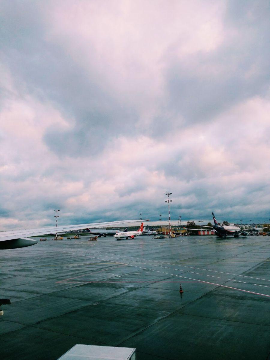 Crónica de un vuelo casi perdido